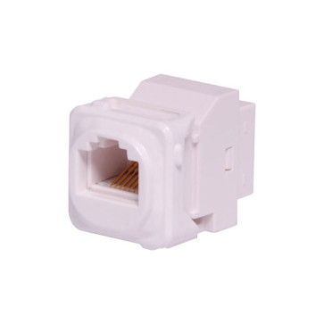 CAT5e RJ45 Back to Back Wall Plate Insert