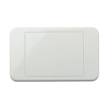 Digitek Custom Blank Wall Plate White 05DWP00