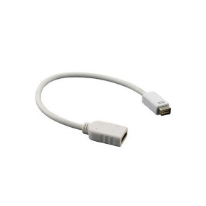 Mini DVI to HDMI Cable Adapter